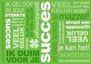 succes---tekstwolk-1